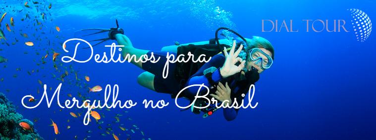 Melhores destinos para MERGULHO no Brasil!